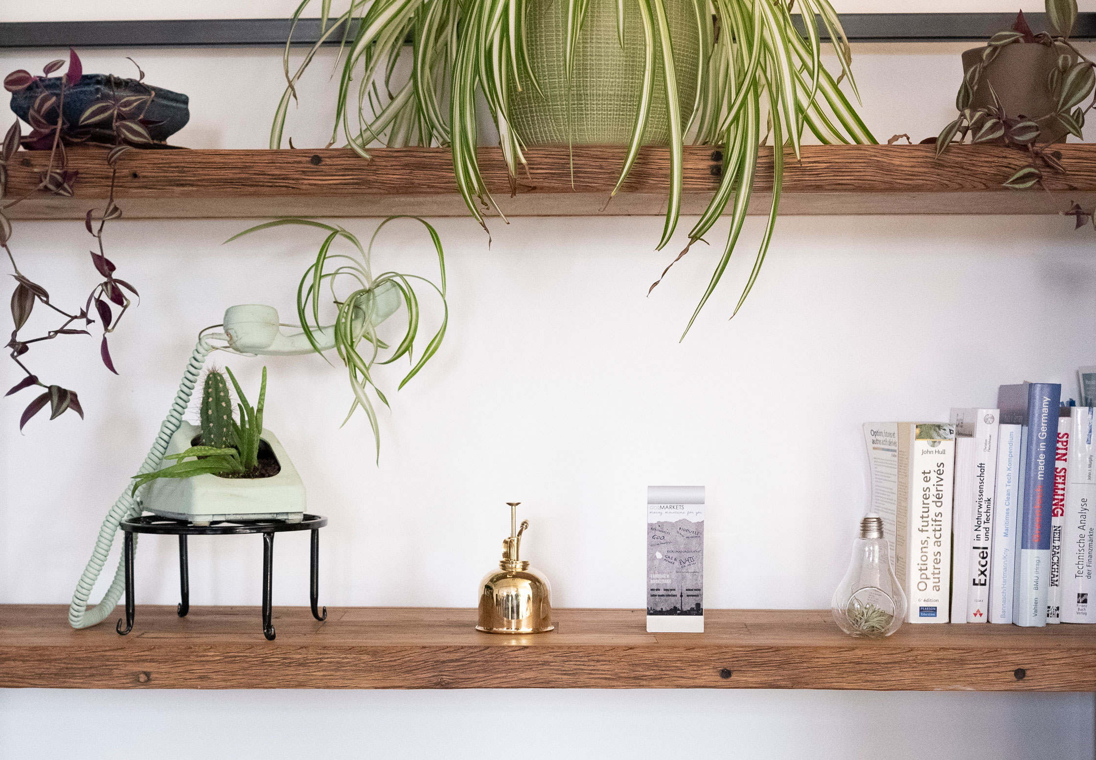 A phone, plants, books, and small decorations on a wooden shelf